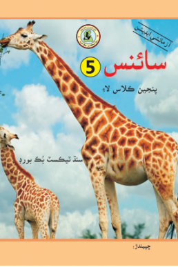 5th Class Science PDF Text Book in Sindhi by STBB